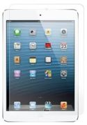 Extreme iPad Mini Cases and